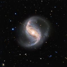 An Often Ignored Beauty. This picture of the week shows the spiral galaxy NGC 986 in the constellation of Fornax (The Furnace). The galaxy, which was discovered in 1826 by the Scottish astronomer James Dunlop, is not often imaged due to its proximity to the famous and rich Fornax Cluster of galaxies. Which is a shame, as this galaxy is not only a great scientific object, but also very pretty. The galaxy is about 56 million light-years away and seen almost perfectly from the top, or — as astr