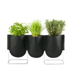 Urban Garden Plant Bag Set: Touch of Modern