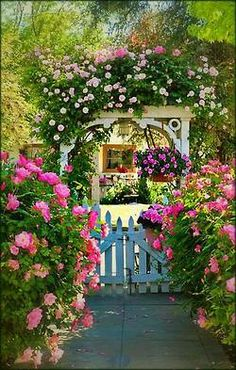 all the beauty things...English garden