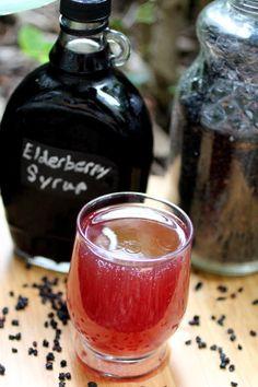 Elderberry Kombucha