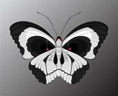 a skull within a butterfly