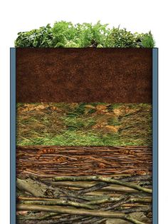 Garten Filling the raised bed - tips with video instructions OBI How To Care For A Hardwood Floor Ha Raised Garden Beds, Raised Beds, Back Gardens, Outdoor Gardens, Garden Paths, Garden Landscaping, Hydrangea Care, Vegetable Garden Design, Growing Plants
