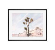 "Joshua Tree #5 Framed Print by Jane Wilder, 20 x 16"", Wood Gallery Frame, Black, Mat"