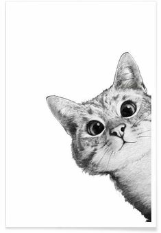 East Urban Home 'Sneaky Cat' Graphic Art Print Size: H x W, Format: White Framed Sneaky Cat, Image Chat, Cat Posters, Art Mural, Cat Drawing, Drawing Ideas, Animal Drawings, Drawing Animals, Pencil Drawings