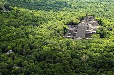 Archaelogical Site of Calakmul and Biosphere Day Trip from Villahermosa On this day trip, you will visit the amazing ruins of Calakmul and get a chance to see great wildlife and flora. Your tour includes transport and a professional guide.Your tour begins with hotel pickup in Villahermosa. From there, you will drive for about 5 hours aboard a van to the Biosphere Reserve and the Calakmul ruins. Once there, you'll have a chance to admire and discover this UNESCO World Heritage ...