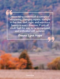 """Fall quotes: """"Steam rising underneath a canopy of whispering, changing aspens; starlight in the clear, dark night, and wondrous beauty in every direction. If only all could feel this way, to be so captured and enthralled with autumn."""" -Donna Lynn Hope"""