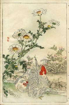 the birds and flowers of kono bairei | As xilogravuras abaixo são do final dos anos 1880.