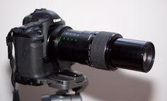 Le Canon 65 MP-E 2.8 : Pourquoi ? Comment ? http://xaviercoulmier.over-blog.com/article-36359647.html