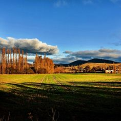 "We can't describe this shot any better that @ wade777 has. ""This is a farm in New Norfolk, Tasmania. It is ridiculously beautiful out there"". #derwentvalley #newnorfolk #tasmania #discovertasmania"