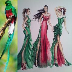 My collection inspired by Guatemala's Quetzal <3