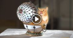 Golden Kitty, found inside Faberge egg, is the most precious part of itThe egg is to be seen at Faberge Museum,  ...