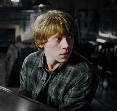 omg his beauty❤❤ La Saga Harry Potter, Harry Potter Icons, Harry Potter Tumblr, Harry Potter Facts, James Potter, Harry Potter Fandom, Harry Potter Characters, Ron Weasley, Ron And Hermione