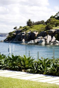 Contemporary landscape design on Sydney harbour