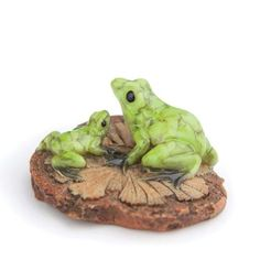 Fiddlehead Fairy Village  2 Frogs On A Woodchip ** Be sure to check out this awesome product.