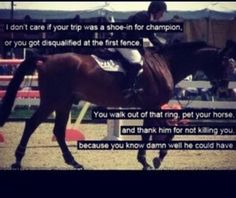 You walk out of that ring, pet your horse and thank him for not killing you. Because you know damn well he could have.