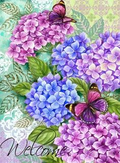 Hydrangea and butterflies