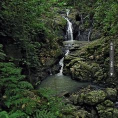 Neato - Namale Waterfall deep in the rain forest in Fiji | CHECK OUT MORE IDEAS AT WEDDINGPINS.NET | #weddings #honeymoon #weddingnight #coolideas #events #forhoneymoon #honeymoonplaces #romance #beauty #planners #cards #weddingdestinations #travel #romanticplaces