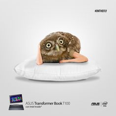 ASUS Transformer Book #T100 #onthefly
