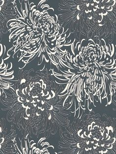 Monsoon's Chrysanthemum is taken from the Monsoon wallpaper collection and is in stock and available for purchase.