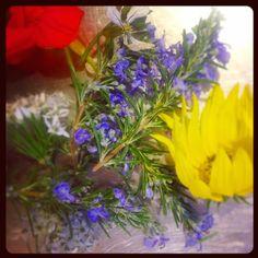 edible rosemary flowers, garlic chive flowers and sunflower