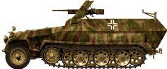 Sd.Kfz.251/10, Italy, 1944