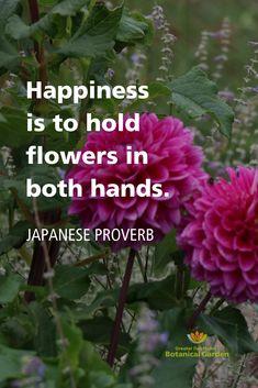 Holding Flowers, Garden Quotes, Public Garden, Happy B Day, Nature Quotes, Flowers Garden, Words Quotes, Botanical Gardens, Namaste