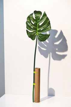 Shop Monstera Leaf Faux Plant at Urban Outfitters today. We carry all the latest styles, colors and brands for you to choose from right here. Plant Wall Decor, Fake Plants Decor, Faux Plants, Green Plants, Artificial Plants And Trees, Artificial Plant Wall, Artificial Flowers, Urban Outfitters, Hawaiian Party Decorations