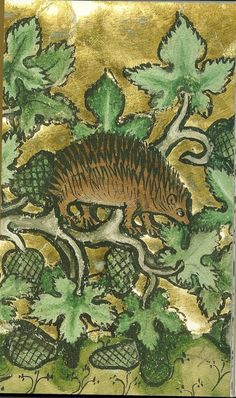 hedgehog - Bestiary-  Therouanne, ca 1270