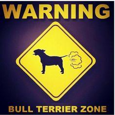 Warning Bull Terrier Zone