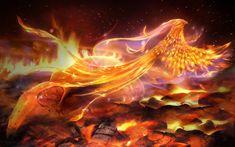Phoenix by MariLucia on DeviantArt Phoenix Design, Phoenix Art, Fantasy Images, Fantasy Art, Fantasy Pictures, Birds Wallpaper Hd, Fire Art, Science Fiction Art, Mythical Creatures