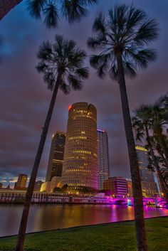 23 Most Beautiful Places to Visit in Florida - The Crazy Tourist Tampa Florida, Clearwater Florida, South Florida, Florida Beaches, Sanibel Island, City Aesthetic, Travel Aesthetic, Dream Vacations, Vacation Spots