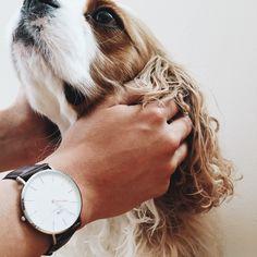 DANIEL WELLINGTON / ** Use SATSUKISHIBUYA for 15% off + a free NATO wristband for all products at www.danielwellington.com until June 15, 2015.