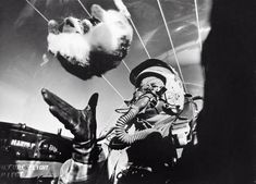 The effects of weightlessness on a kitty cat at 25,000 feet
