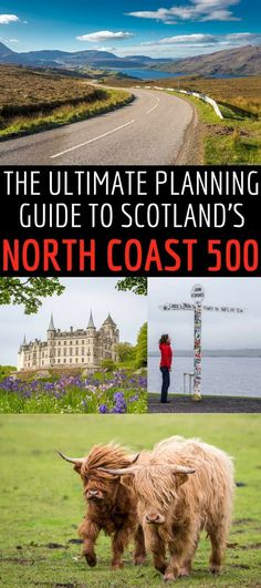 We've put together a comprehensive North Coast 500 guide to help you plan the perfect North Coast 500 road trip in Scotland. We'll explain the North Coast 500 route, what you can expect to see, the best time of year to plan a road trip, how many days you Scotland Travel Guide, Scotland Road Trip, Europe Travel Tips, Ireland Travel, Scotland Vacation, Visiting Scotland, Europe Budget, Travel Uk, Travel Pics