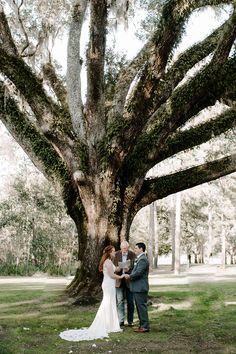 #northfloridawedding #intimatewedding #microwedding #edengardens #stateparkwedding #statepark #floridawedding #floridaintiamtewedding #floridadestinationwedding #destinationwedding #destinflorida #destinfloridawedding #santarosabeach #santarosawedding #destinwedding #30awedding #weddingceremony Destin Florida Wedding, Santa Rosa Beach, Garden Of Eden, Elopements, State Parks, Wedding Ceremony, Destination Wedding, Wedding Dresses, World