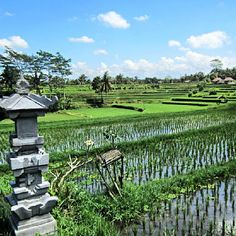 Dream - #voyage #bali #indonesie #photovoyage #tracetaroute #travel #landscape #nature http://www.trace-ta-route.com/escapade-bali