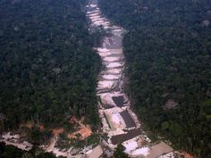 The photo shows a WRECKED WATERWAY THAT ONCE TEEMED WITH LIFE & PROVIDED SUSTENANCE TO TRIBES SINCE TIME BEGAN. Miners have wrecked the rivers & pillaging the rainforests & the once abundant wildlife.... Our disastrous future is being cast !!!! This is the collapse of the Planet & OUR COLLECTIVE FUTURE !! WE ALL MUST ACT !!!