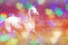 His hooves pound the beat, your heart sings the song.