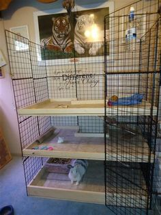 Cube Cage Ideas (Rabbit Houses Furniture)