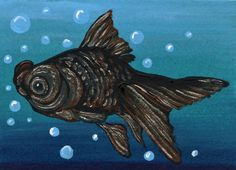 ACEO ATC Black Moor Gold Fish Art Original Painting-Carla Smale #Realism