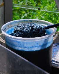 Dyeing with Woad; Natural Fermentation Method with Madder