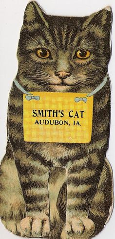 Smiths Cat Aubrun Iowa..trade card id love to know the story behind why Smith chose this as his trade card.