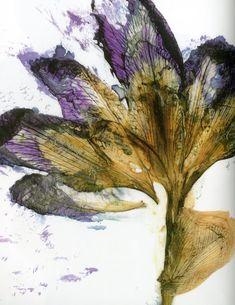 Bloom magazine editorial