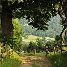Country Fences, Country Roads, Irish Eyes Are Smiling, Witch House, Nature Pictures, Aesthetic Art, Pathways, Mother Nature, Countryside
