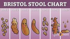 bristol-stool-chart-happy-mama-natural-version_jpg_940x0_q85