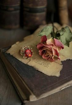Still Life With Old Books, Dried Rose And Big Ring by Jaroslaw Blaminsky is part of Romantic books - Still life with old books, dried rose and big ring Book Flowers, Book Letters, Twelfth Night, Thing 1, Big Rings, Romantic Roses, Poetry Books, Old Books, Best Budget