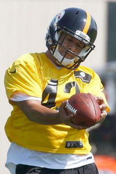 Troy Polamalu, Pittsburgh Steelers