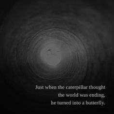 Just when the caterpillar thought the world was ending, he turned into a butterfly.