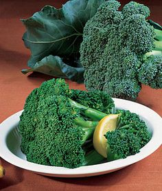 Broccoli, 'Bonanza' Hybrid (Burpee).  This will be part of my attempts at both spring (and fall) vegetable crops and (proper) seed starting indoors.