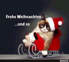 Frohe Weihnachten.. und so.. | Lustige Bilder, Sprüche, Witze, echt lustig